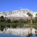 Palm Springs Vacation